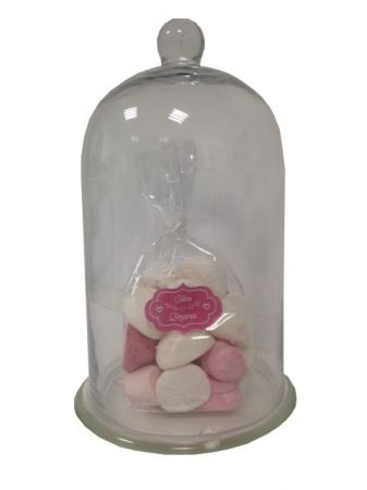 Cloche décorative socle en verre