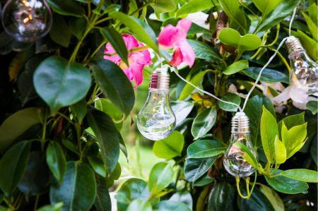 Guirlande lumineuse Guinguette - Ampoules transparentes blanches
