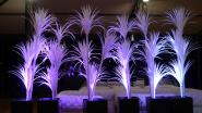 Pack 6 arbres lumineux - Yucca LED