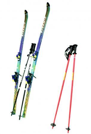 Paire de ski alpin