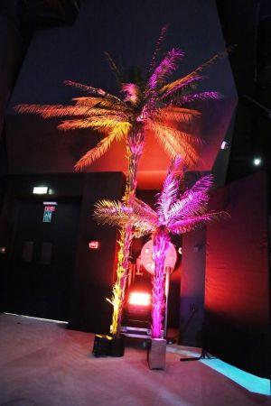 Palmier artificiel 2m40