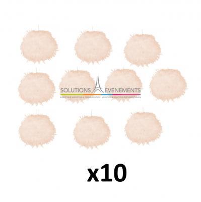 Pack de 10 Boules de Plumes Lumineuse