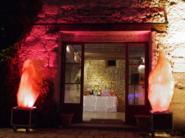 Machine à flamme artificielle - Lampes dichroiques